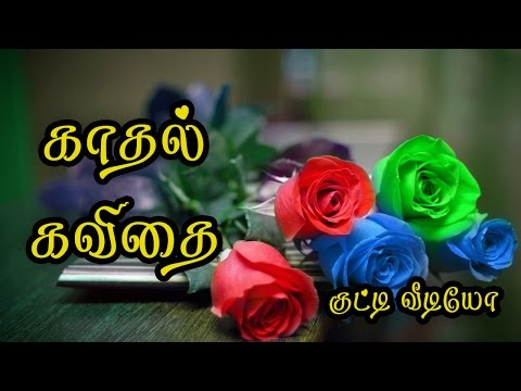 🌹💜❤-kathal-kavithai-tamil-(love-quotes-tamil)-whatsapp-video-🌹💜❤