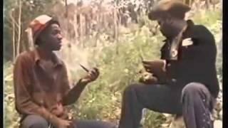 Video - Ganja In Jamaica