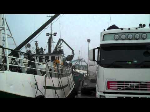 Herring fishing fleet in Baltimore, West Cork.