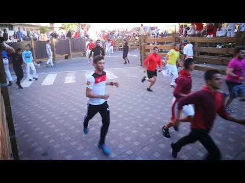 Fiestas de Tudela 2019, día 29: vídeo encierro