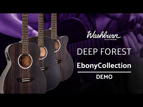 Washburn Deep Forest Ebony Collection Demo