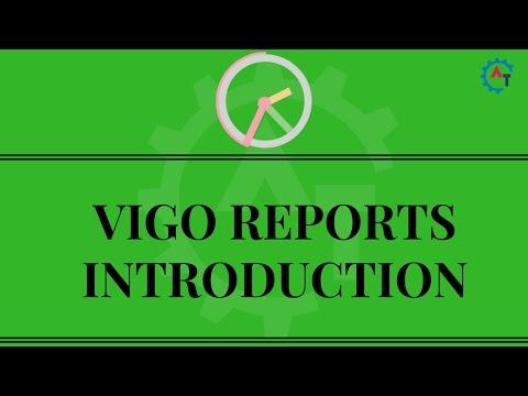 Vigo Reports Introduction - Selenium Webdriver Reports