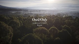 One&Only Gorilla's Nest - Here&Now