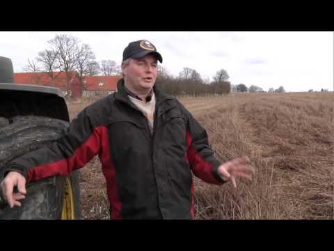 Organic Farming on Samso