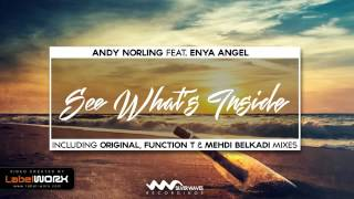 Andy Norling feat. Enya Angel - See What's Inside (Function T Remix) [Silver Waves Recordings]