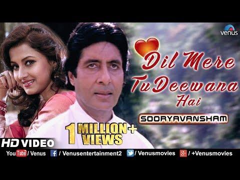 Dil Mere Tu Deewana Hai | Sooryavansham | Amitabh & Rachana Banerjee | 90's Romantic Bollywood Song