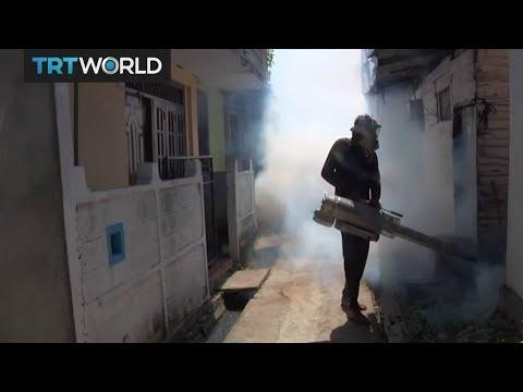Sri Lanka Dengue Outbreak: Government steps up efforts to eradicate virus