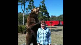 Photo Shoot with Grizzly Bear -- James A. Martin Productions