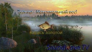 Турнір - Максимальна вага - Карась золотий!Російська Рибалка 4!