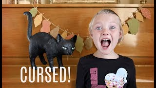 cursed the black cat challenge