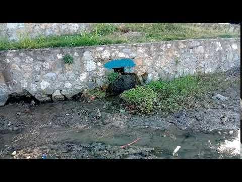 Amasra Küçük limana kanalizasyon mu akıyor?