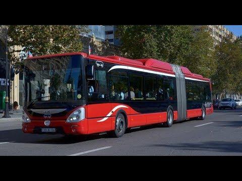 Aeroport yolunda yarışan avtobuslar.