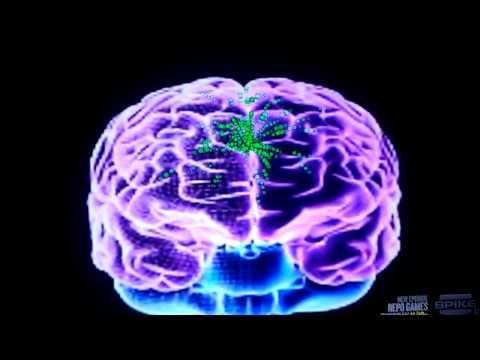 How to stop binge drinking brain damage????