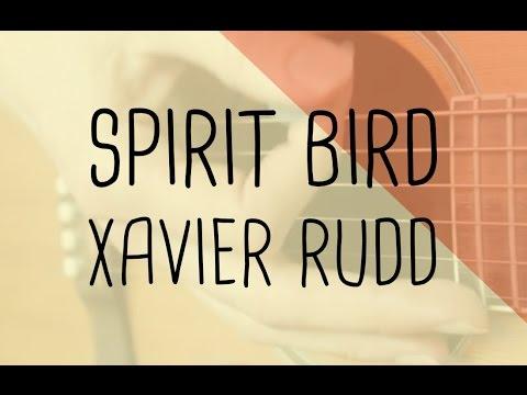 How to play Spirit Bird Xavier Rudd | Guitar Lesson & Songsheet
