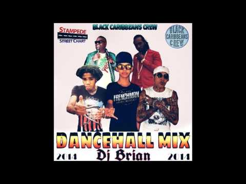 DJ BRIAN - DANCEHALL MIX NOV 2014