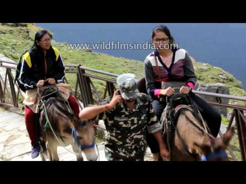 Indian soldier turns into muleteer to serve senior officer's wife and daughter