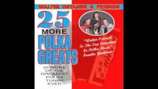 Walter Ostanek - More Polka Greats - Roseanne Polka