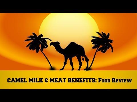 What Happens If You Drink Camel Milk & Eat Camel Meat?