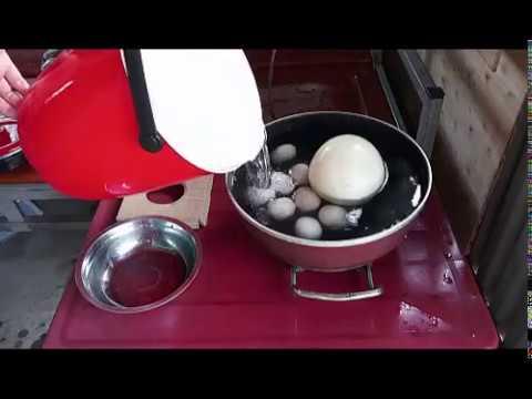 Trứng Đà Điểu Luộc _TRANG TRẠI ĐÀ ĐIỂU PHƯƠNG NAM