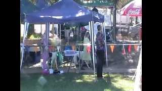 Part Three Canberra 2012 Royal Dog Show - Norwegian Elkhound