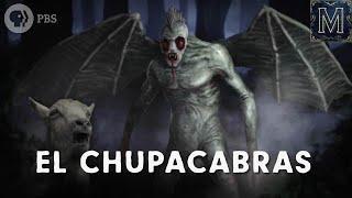 Chupacabra Backstories