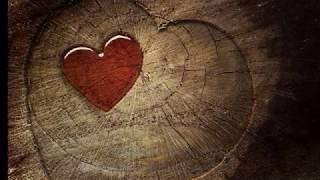 Dil ko zara sa aaram denge (Lyrics) | Romantic Song | Kumar Sanu