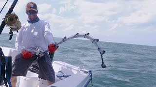 Fishing for Cobia and Monster Bull Sharks - 4K.
