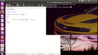 7 - les boucles langage Script Bash linux