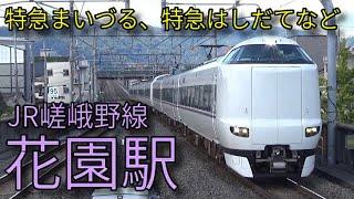 【JR嵯峨野線】221系快速 287系特急はしだてなど 花園駅発着&通過集