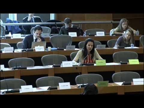 Barbara Kappel - Fragen an Vertreter aus Andorra, Liechtenstein und Monaco