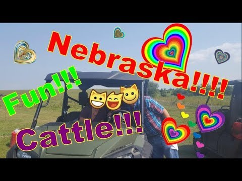 My Time at the Nebraska State Fair Part 1!