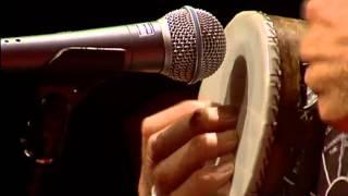 Tambourine Solo: Greg Sheehan at TEDxSydney