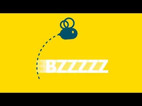 Bee TV Live Stream