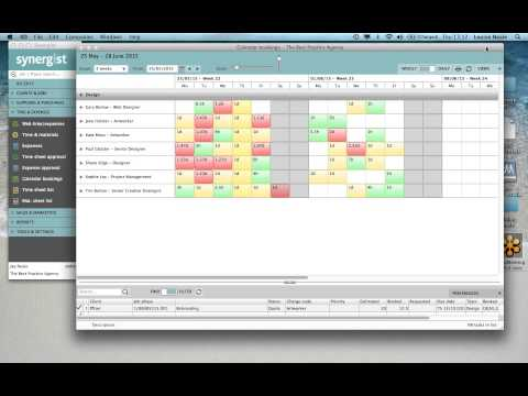 Best Practice in Managing Resource Scheduling with Synergist