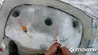 На рыбалке магнитная буря