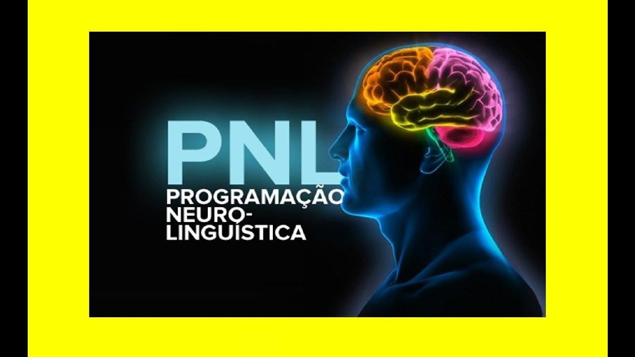 Aprendizaje Dinamico Con Pnl Pdf