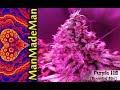 ManMadeMan - Purple Hill [The Essential Mix]