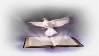 Chúa Hỡi Con Về | Nhạc Thánh Ca | Những Bài Hát Thánh Ca Hay Nhất