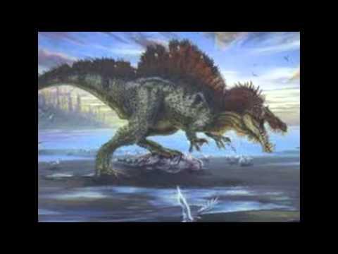 Tyrannosaurus Rex vs Giganotosaurus vs Spinosaurus - YouTubeGiganotosaurus Vs Spinosaurus