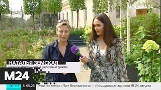 """В столице проходят бесплатные экскурсии по садам """"Цветочного джема"""" - Москва 24"""