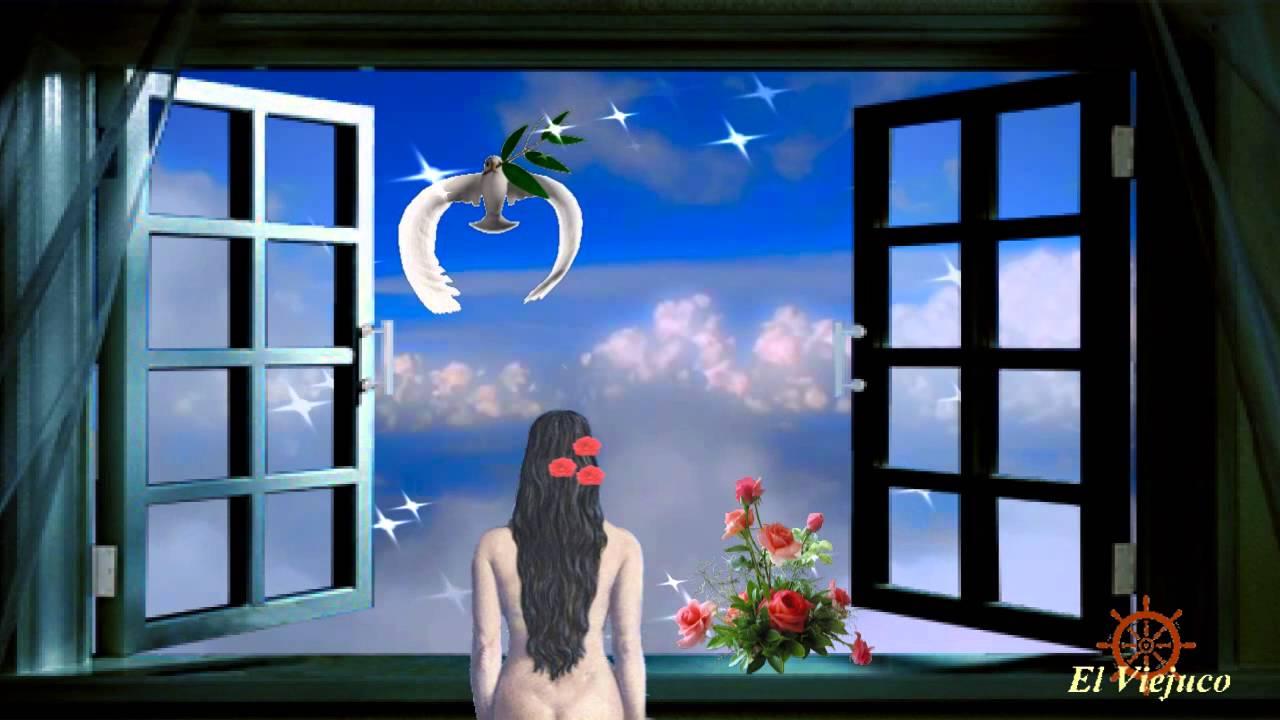 La paloma youtube - Condensacion en las ventanas ...
