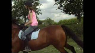 vuclip For Katie - The most amazing horse in the world xXx