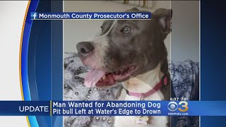 Arrest Warrant Issued For Man Accused Of Leaving Pit Bull To Drown In Cage