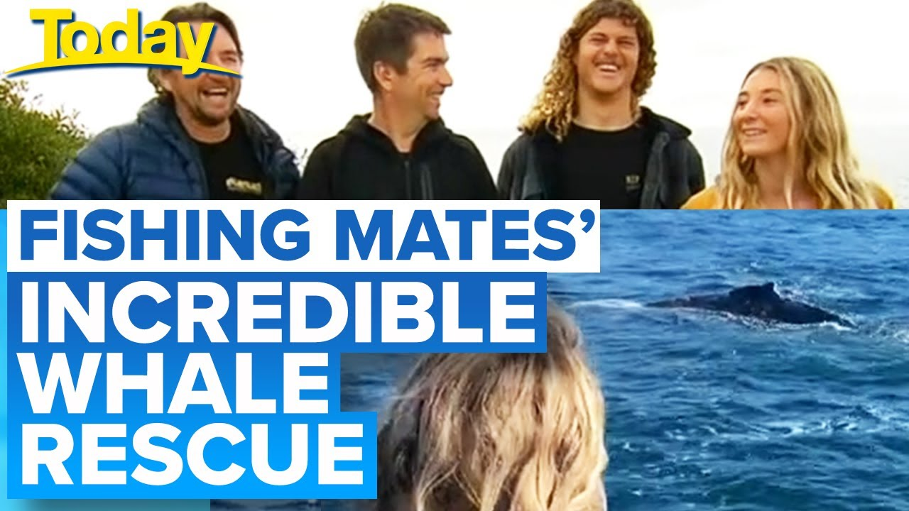 Mates on fishing trip save whale wrapped in rope | Today Show Australia