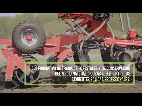 fp-trabajos-forestales-y-de-conservación-del-medio-natural