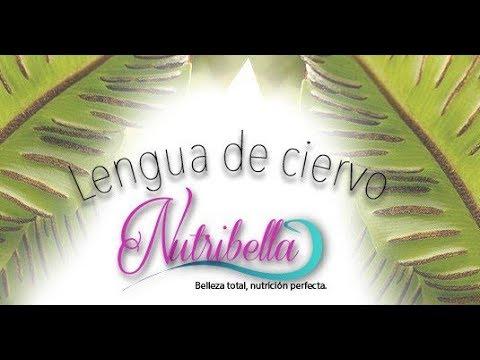NUTRIBELLA  - LENGUA DE CIERVO con A.H. KARINA ACOSTA