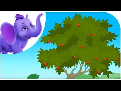 Classic Rhymes from Appu Series - Nursery Rhyme - The Apple Tree
