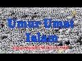 UMUR UMAT ISLAM Ust. Zulkifli M. Ali, Lc, MA