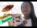 Reacting to Girl Collects Roaches!!!
