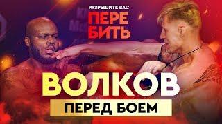 Волков: я готов ударить даже на взвешивании / UFC 229